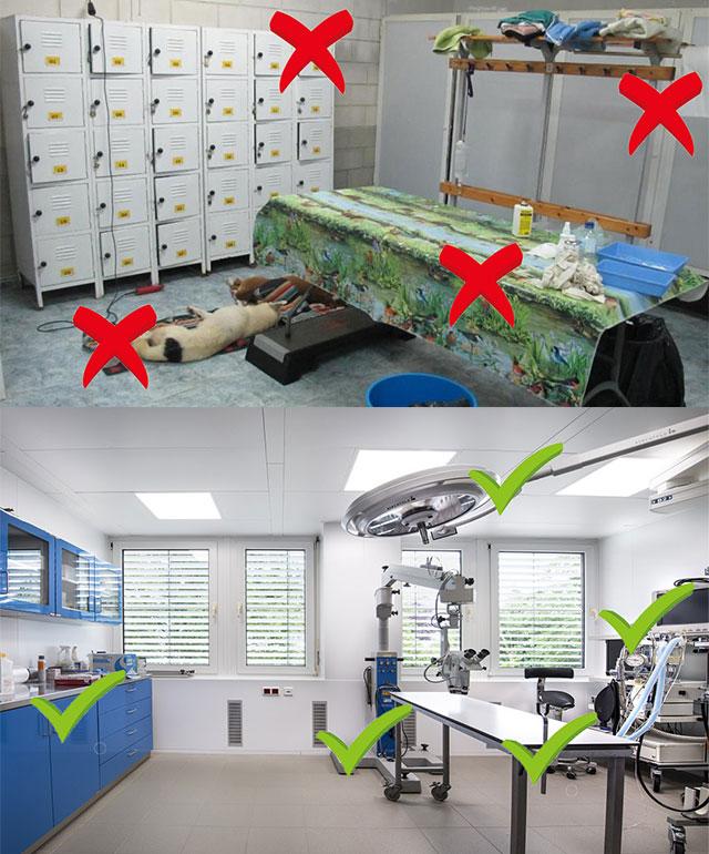 como-montar-uma-clínica-veterinária