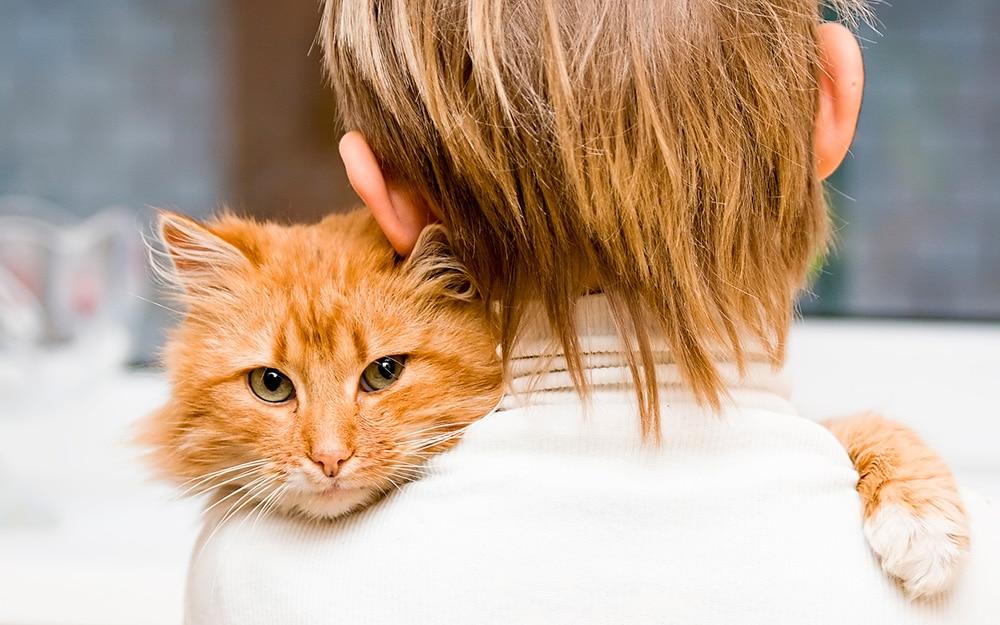 7-dicas-fidelizar-cliente-clinica-veterinaria